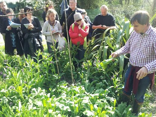 martin-forest-gardening-course
