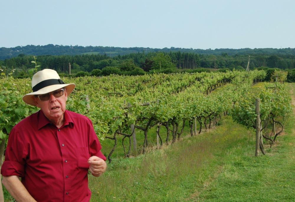 David, tour guide, Carr Taylor Vineyard