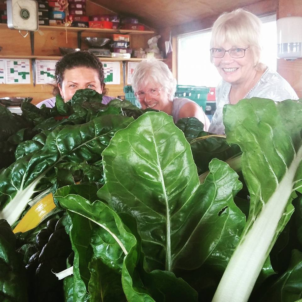 Some of the team that pack the Veg Boxes