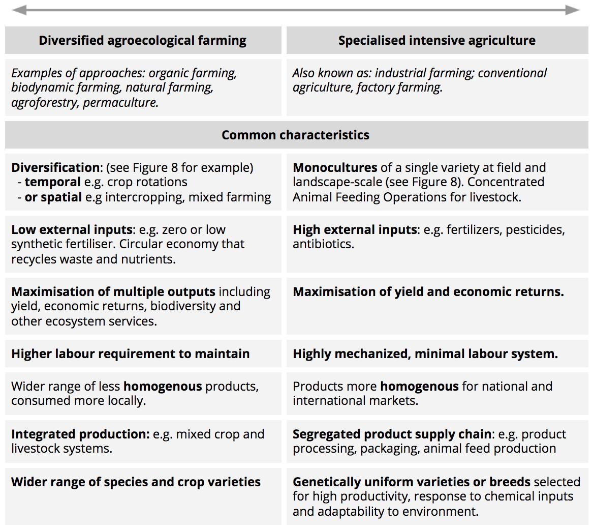 Intensive farming essay