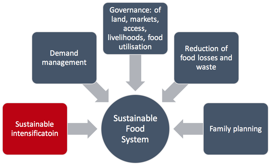 The Role of Sustainable Intensification – Samuel Smith
